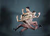 Giordano Dance Chicago at Auditorium Theatre Review – Historic First Full-Length Program on Landmark Stage