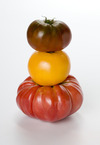 Tomato Terms, Tips, and Types - Get Ready to Harvest Something Delicious