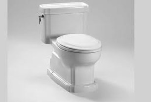 The Eco Guinevere® Toilet and Washlet s350 Review - Superior Toto Quality and Performance