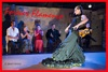 FOREVER FLAMENCO! at the Fountain Review  - Intense Flamenco Performance