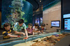 Marine Life Park – A water-wonderland for all