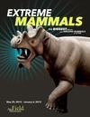 Extreme Mammals Review – They Don't Look Like Mammals