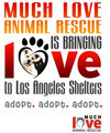 West La Animal Shelter and Much Love Animal Rescue Present - Meet Your Perfect Match On Saturday May 12!