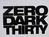Zero Dark Thirty Review-Where is Osama Bin Laden?