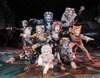CATS The Musical Review-Decades on Broadway and Still The CATS Meow