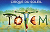 Cirque du Soleil Totem Santa Monica Review - Amazing!