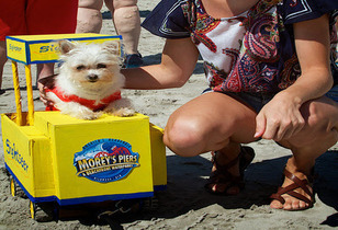 Morey's Pier Famous Wildwood  Boardwalk - Raging Waters Went To The Dogs