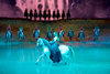 Preview of Cavalia's Odysseo - A Theatrical Experience Like No Other