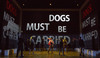 """The Curious Incident of the Dog in the Night Time"" Review -  Tony Award-winning riveting production!"