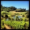 Northern California Wine Country Getaway: 15 Wineries in 3 Days