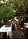 Fine Dining in Mexico Review - Cafe Des Artistes