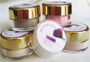 Day to Remember Pure Mineral Vegan Friendly Makeup Gift Set