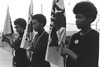The Black Panthers: Vanguard of the Revolution Review - Riveting