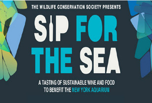 Sip for the Sea - Get your tickets