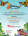 Butterfly Month Is At Westfield - Santa Anita In Arcadia California