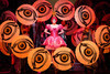 Les Contes d'Hoffmann at MET: HD Review – The Love Life of a Poet