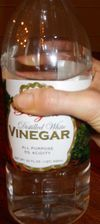 Donna's Beauty Tips with Vinegar