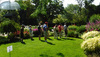 Go Green Wilmette Alternative Yard Tour Review – The Fifth Year, Reinforcing and Inspiring
