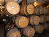 Review of What You Should Know About Tap Wine – Wisdom from City Winery's Chief Winemaker
