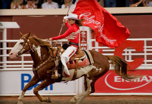 Calgary Stampede Review The Calgary Stampede Rides Into
