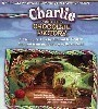 Charlie and the Chocolate Factory - A Sweet Treat Coming to Hollywood