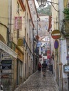 Soaking Up Sintra Side Streets Review – Inviting You to Plant