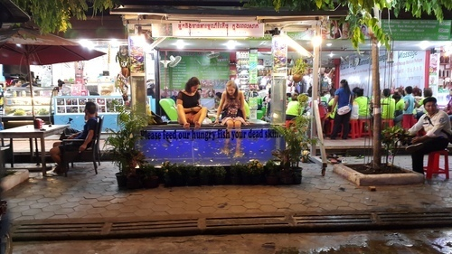 Sokha angkor resort review the traveler s haven for for Fish pedicure los angeles