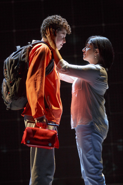 christopher boone as unreliable narrator The curious incident of the dog in do you think christopher boone is a reliable narrator or a i can address the idea of christopher as an unreliable narrator.