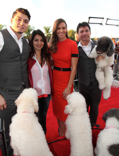Where Can I View National Dog Show Thanksgiving Night