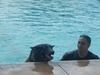 Dog Days of  Summer 2014 Review – An Air Force Base Offers a Great Day for Dogs