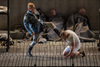 Wozzeck at Chicago Lyric Opera Review – A New, Extremely Powerful Production
