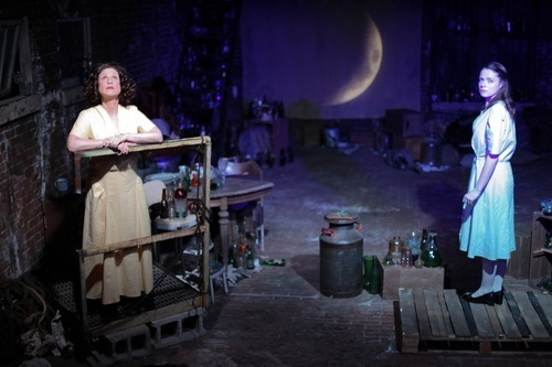 the importance of the symbolic glass collection in the play the glass menagerie The glass menagerie has many symbolic objects throughout the play which can be analyzed further in detail the title of the play is representational of the collection.