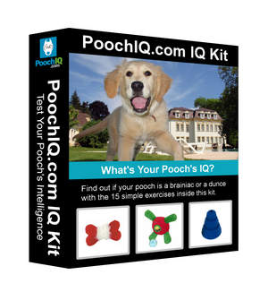 Pooch IQ Kit