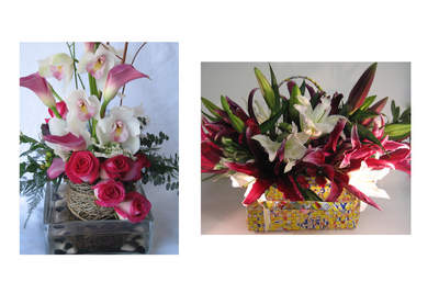 Wisteria Lane Organic Floral Design's Organic and VeriFlora flower arrangements in Half the Sky Designs' popular Rebagz totes which are hand-woven from recycled juice packs. For more information, visit www.WisteriaLaneFlowerShop.com or call 888-345-6101