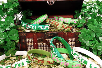 Dublin Dog Collars in Lots O' Luck