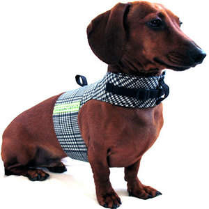 Annie's Sweatshop, The Wrap Harness