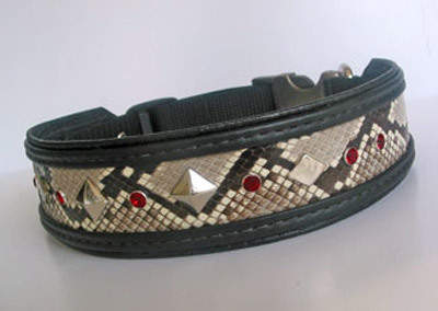 Sunset Strip Python Dog Collar