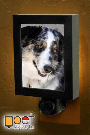 Upload your photo and create your own custom Pet Night Light at www.petnightlights.com