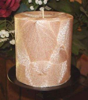 Beautiful Feather Palm Wax Pillar