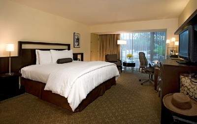 Our luxurious and serene renovated guestrooms