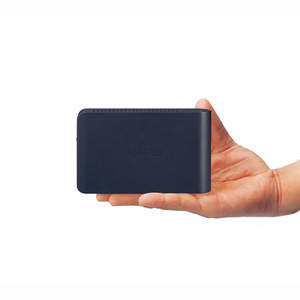 LinkStation Mini in the Palm of Your Hand