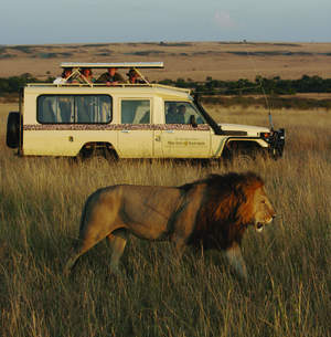 Micato Safaris- Game Viewing in the Maasai Mara