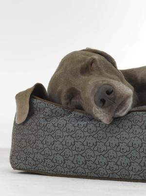 Hilton Pet Bed, designed exclusively for Hilton by famed artist William Wegman and Crypton Super Fabrics