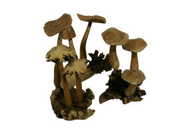Adorable Mushroom Clusters from Arhaus Furniture come in sizes small, medium and large.
