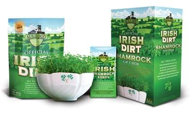 Grow Official Irish Shamrock seeds in authentic Irish Dirt in a beautifully crafted Belleek bowl.