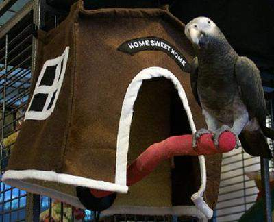 Forget the crackers! Polly wants an Avian Haven Hut. The huts, which are sold online, are available in two sizes; large and small.