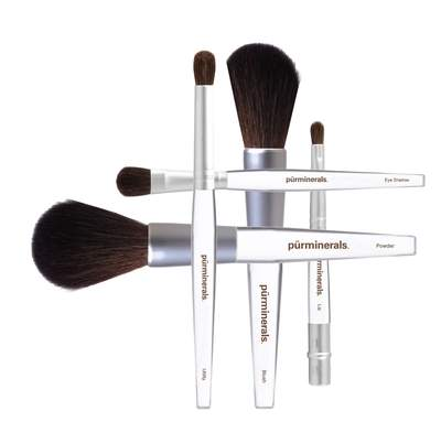 Pur Minerals Holiday Brush Set