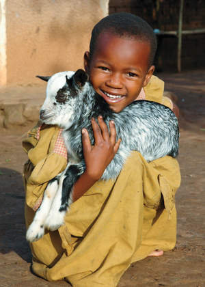 Give a goat and help struggling families