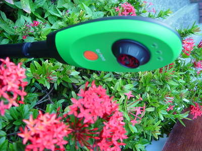 GardenWatch Cam with flowers