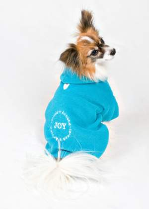 Joy – Spread It Around Hoodie